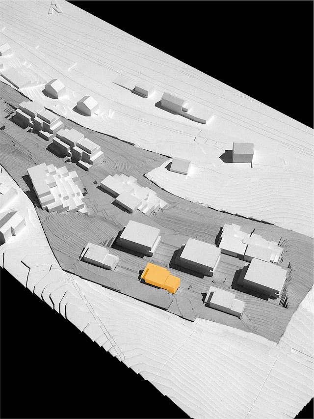 allard architecture • Immensee • Site Model